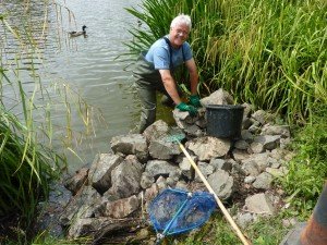 Pond Warden at Hanley Swan