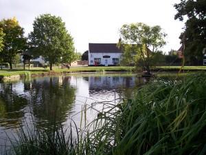 hanley swan, worcester village pond project