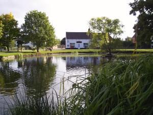 tourist information hanley swan